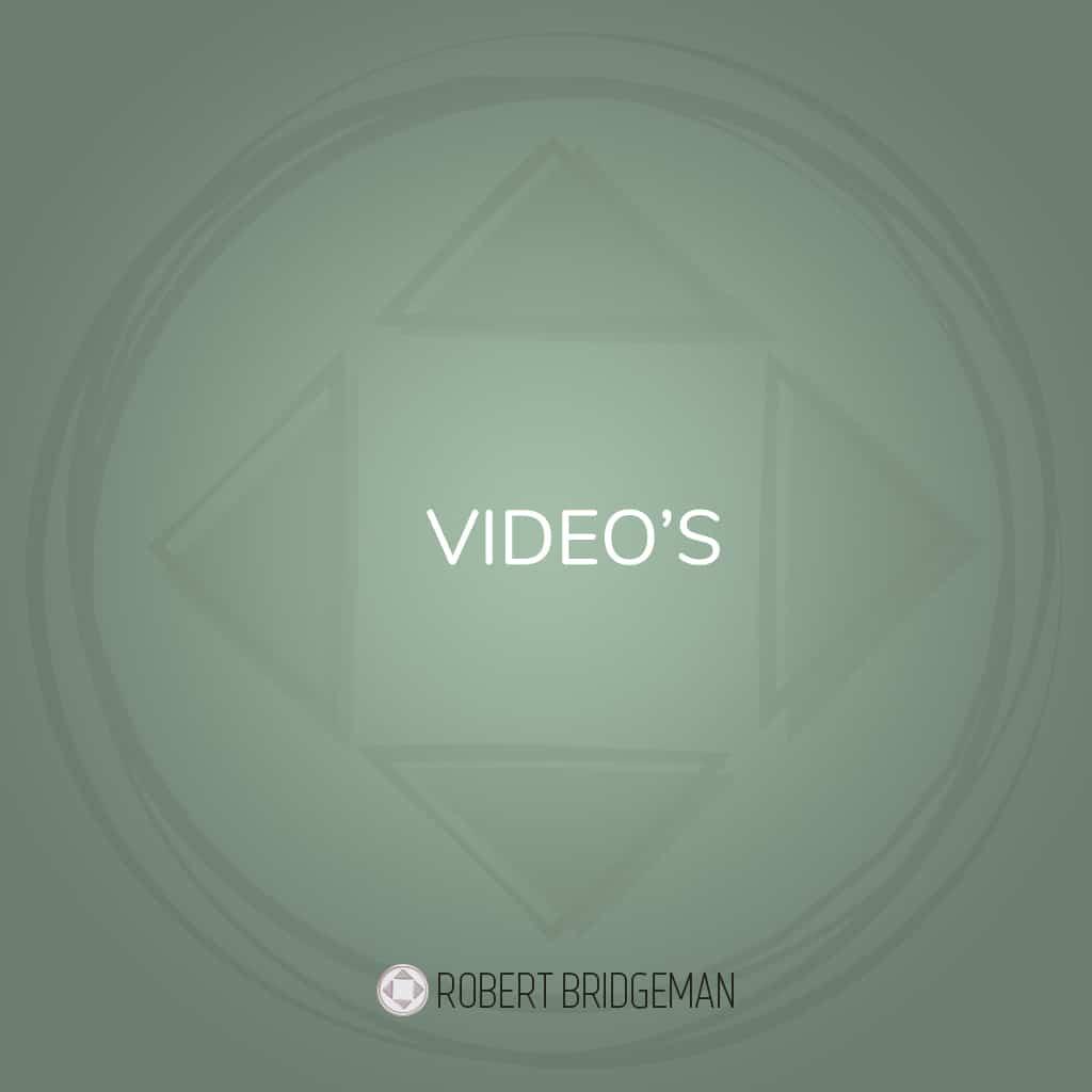 video's Robert Bridgeman
